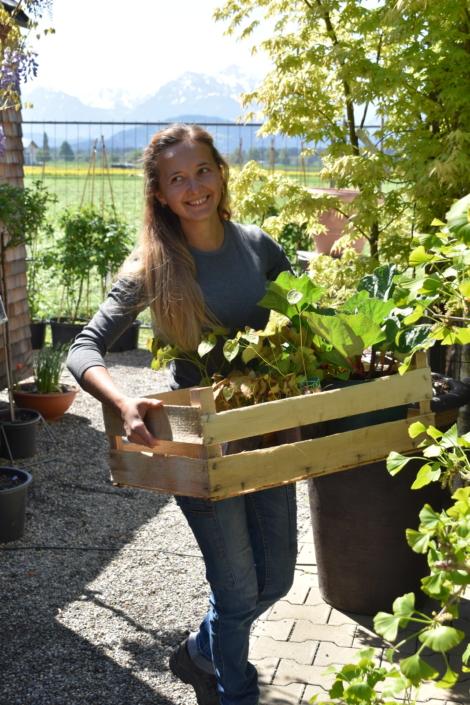 Tag der offenen Tür bei alex gartenbau